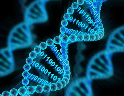 Researchers Store Digital Data in Synthetic DNA
